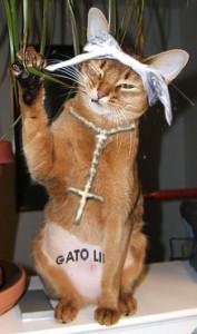 Gangster Gato